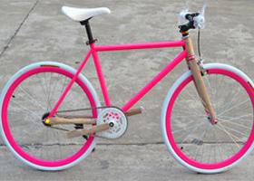 Bicycle powder